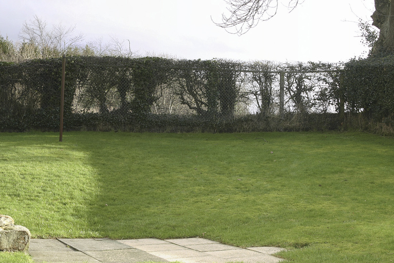 Small fife garden scottish garden design portfolio for Garden design ideas scotland