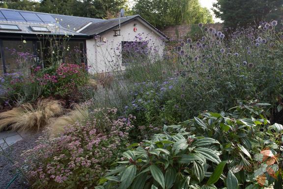 New perennial garden scottish garden design portfolio for Garden design ideas scotland